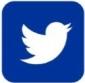 Social Networks Blue